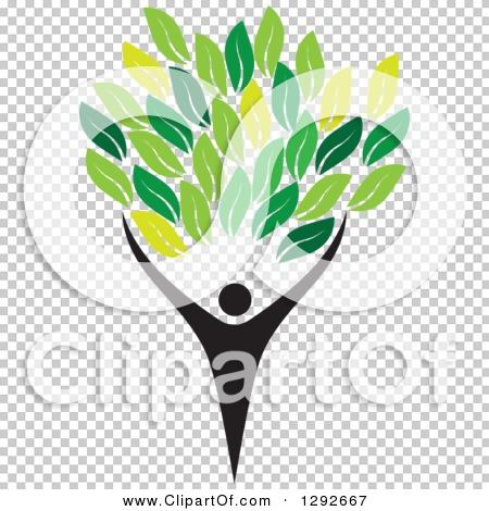 Transparent clip art background preview #COLLC1292667
