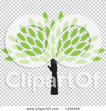 Transparent clip art background preview #COLLC1336368