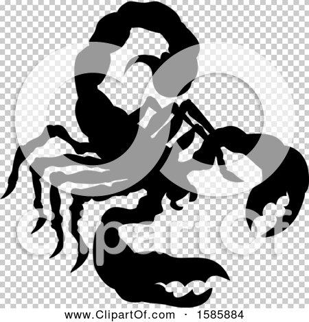 Transparent clip art background preview #COLLC1585884