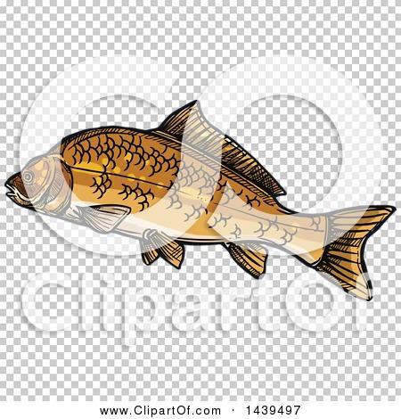 Transparent clip art background preview #COLLC1439497