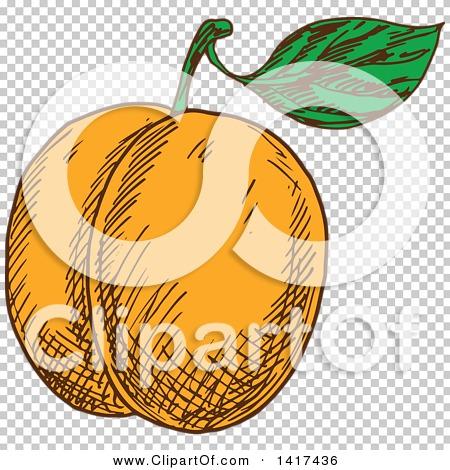 Transparent clip art background preview #COLLC1417436