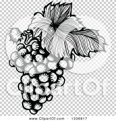 Transparent clip art background preview #COLLC1336817