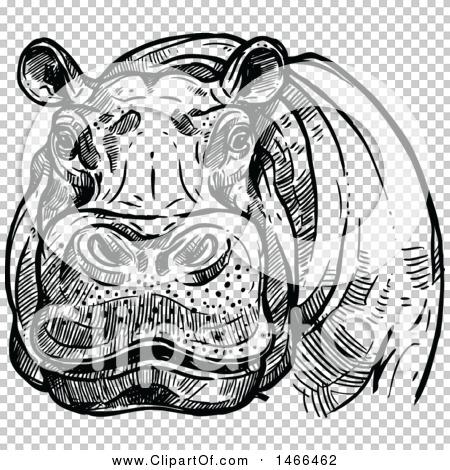 Transparent clip art background preview #COLLC1466462