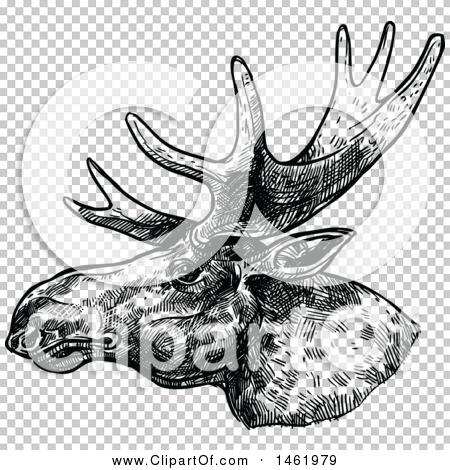 Transparent clip art background preview #COLLC1461979