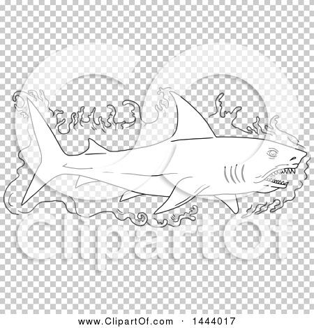 Transparent clip art background preview #COLLC1444017