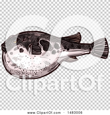 Transparent clip art background preview #COLLC1483006