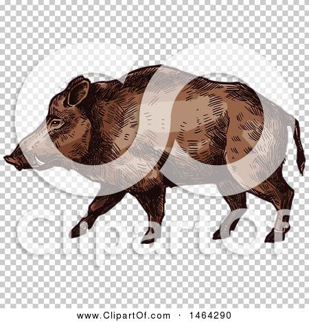 Transparent clip art background preview #COLLC1464290