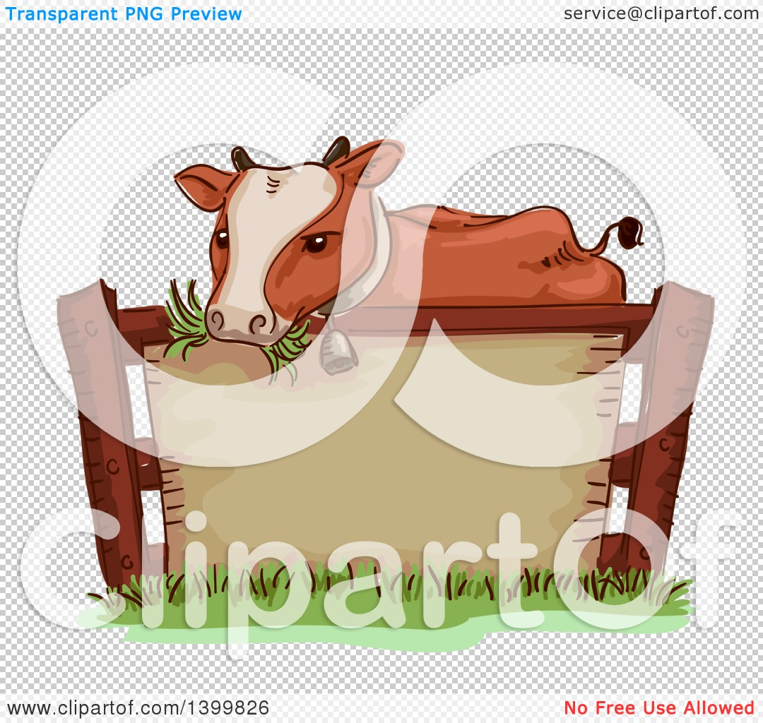 Clipart of a Sketched Cow Wearing a Bell and Chewing Grass over a ...