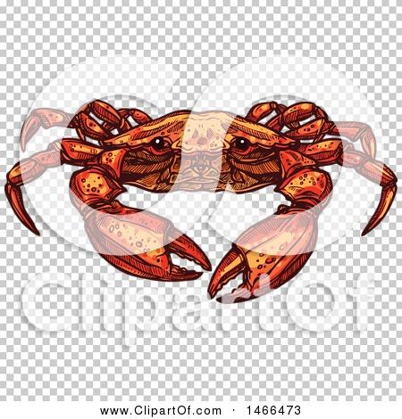 Transparent clip art background preview #COLLC1466473