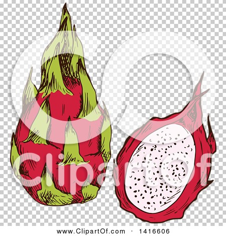 Transparent clip art background preview #COLLC1416606