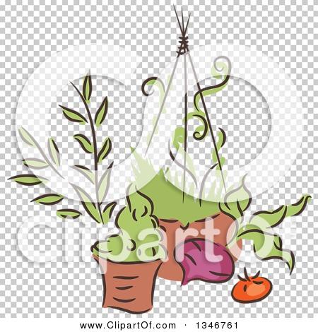 Transparent clip art background preview #COLLC1346761