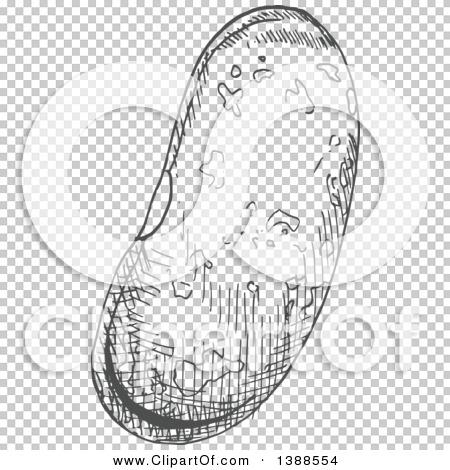 Transparent clip art background preview #COLLC1388554