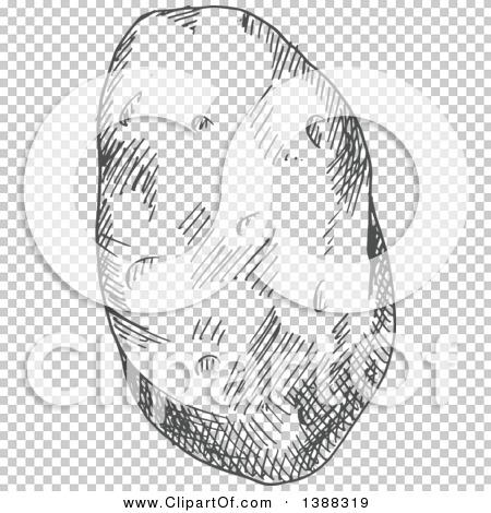 Transparent clip art background preview #COLLC1388319