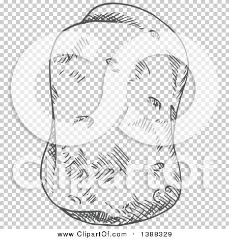 Transparent clip art background preview #COLLC1388329
