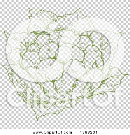 Transparent clip art background preview #COLLC1388231
