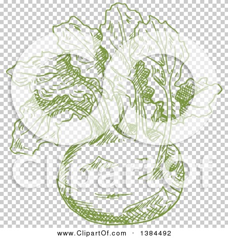 Transparent clip art background preview #COLLC1384492