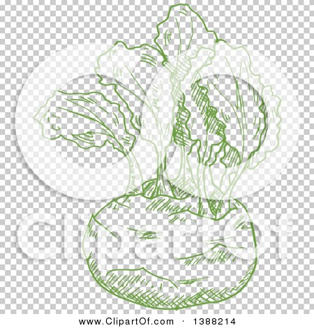 Transparent clip art background preview #COLLC1388214