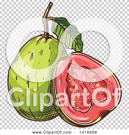 Transparent clip art background preview #COLLC1416658