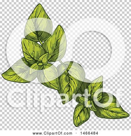 Transparent clip art background preview #COLLC1466484