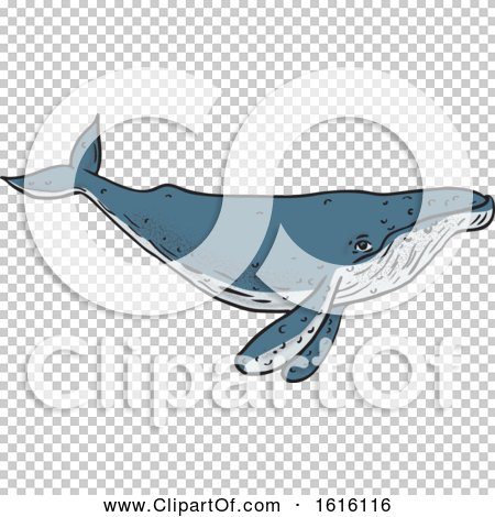 Transparent clip art background preview #COLLC1616116