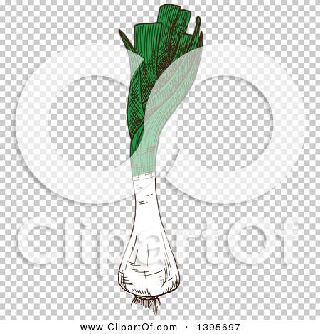 Transparent clip art background preview #COLLC1395697