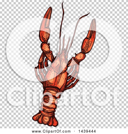 Transparent clip art background preview #COLLC1439444
