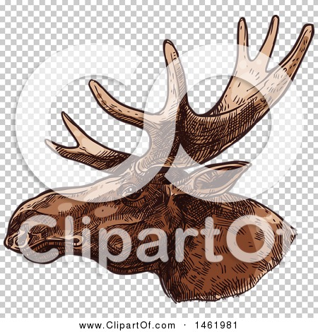 Transparent clip art background preview #COLLC1461981