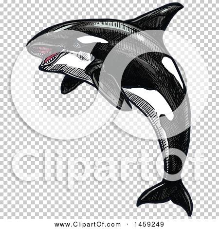 Transparent clip art background preview #COLLC1459249