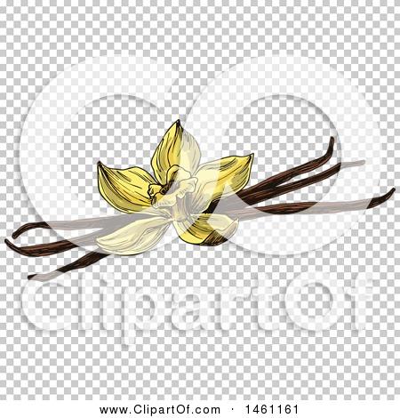 Transparent clip art background preview #COLLC1461161