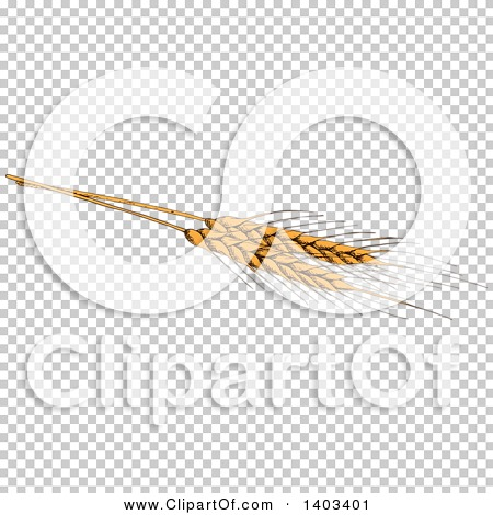 Transparent clip art background preview #COLLC1403401