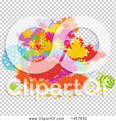 Transparent clip art background preview #COLLC1457632