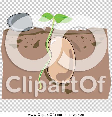 Transparent clip art background preview #COLLC1120498
