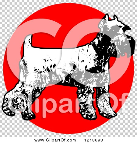 Transparent clip art background preview #COLLC1218698