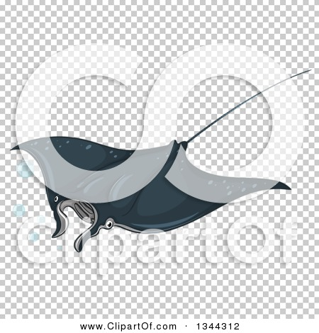Transparent clip art background preview #COLLC1344312