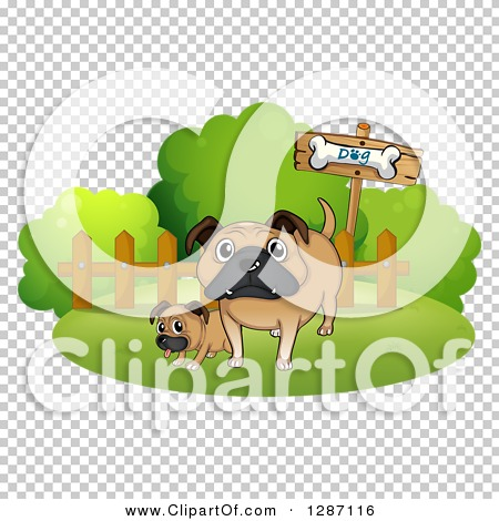 Transparent clip art background preview #COLLC1287116