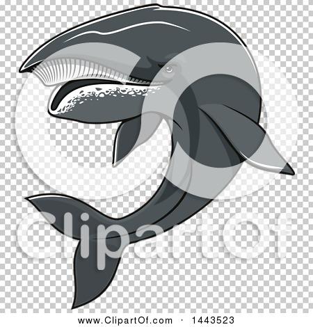 Transparent clip art background preview #COLLC1443523