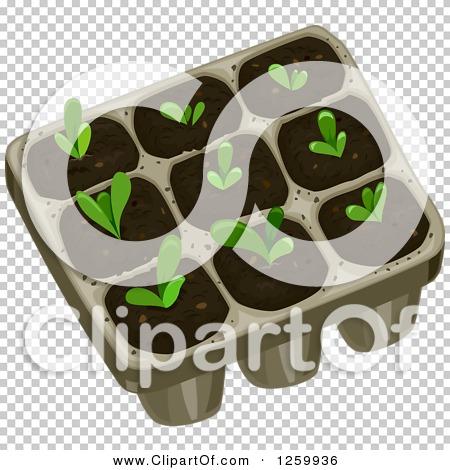 Transparent clip art background preview #COLLC1259936