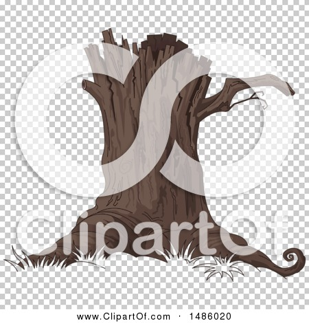 Transparent clip art background preview #COLLC1486020