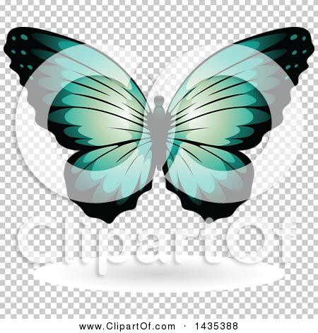 Transparent clip art background preview #COLLC1435388