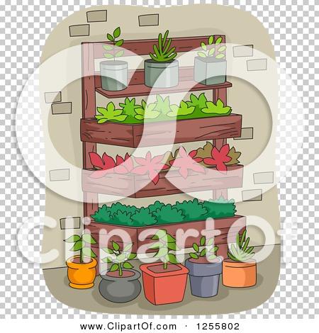 Transparent clip art background preview #COLLC1255802