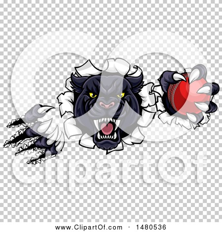 Transparent clip art background preview #COLLC1480536