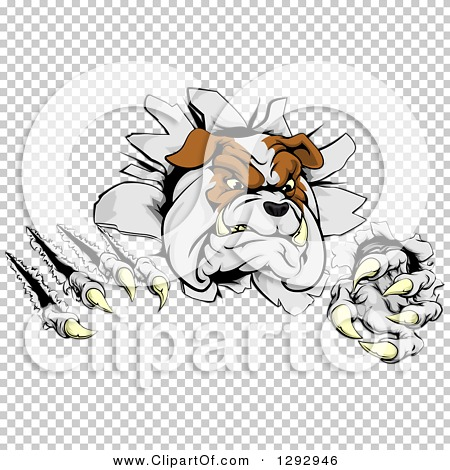 Transparent clip art background preview #COLLC1292946