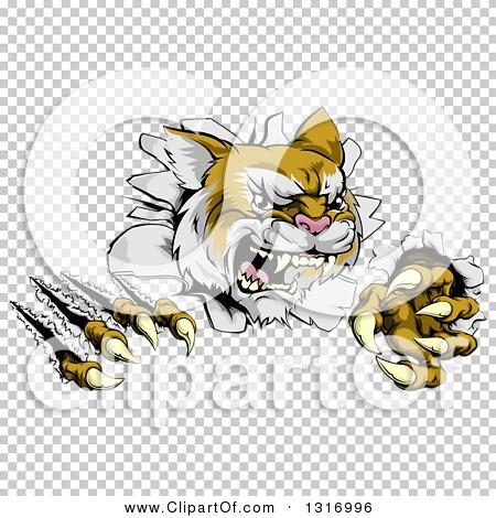 Transparent clip art background preview #COLLC1316996