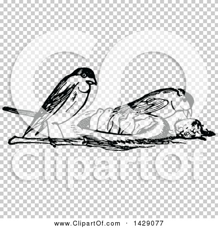 Transparent clip art background preview #COLLC1429077