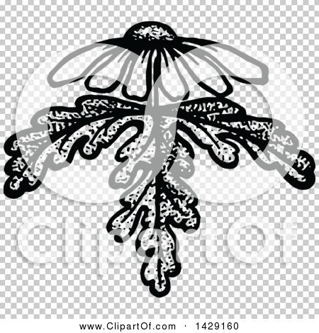 Transparent clip art background preview #COLLC1429160