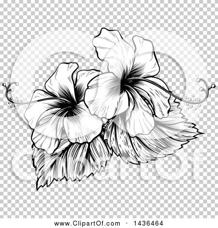 Transparent clip art background preview #COLLC1436464