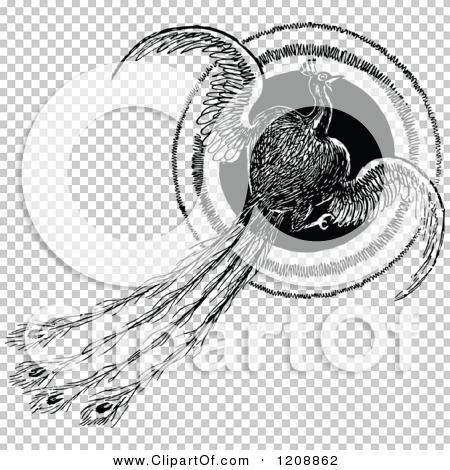 Transparent clip art background preview #COLLC1208862