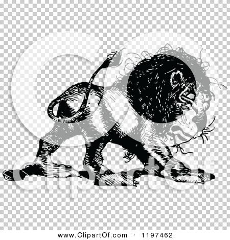 Transparent clip art background preview #COLLC1197462