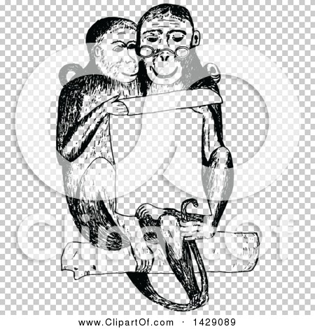Transparent clip art background preview #COLLC1429089