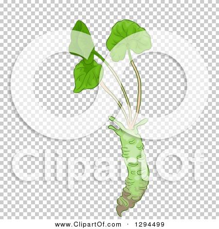 Transparent clip art background preview #COLLC1294499